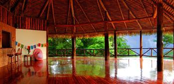 http://ricayoga.com/images/yogajungle.jpg